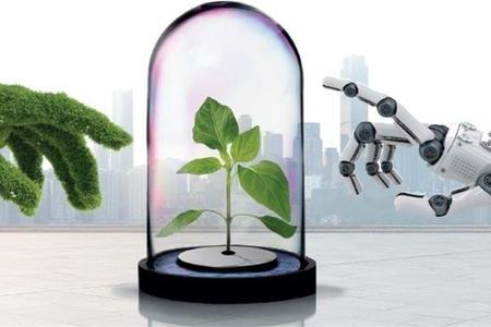 El futuro del sector agrícola está en la robotización de sus cosechas